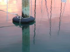 Kiwi Rigging can upgrade your mooring lines so they're easy to grab